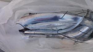 太刀魚! - [3/4]