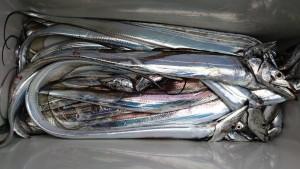 太刀魚~(^^)/ - [5/9]