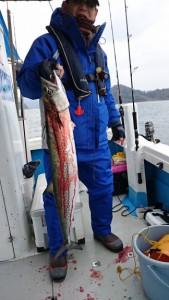 寒ブリ&太刀魚!! - [2/7]