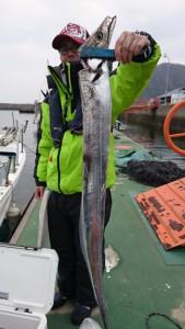 寒ブリ&太刀魚!! - [5/7]
