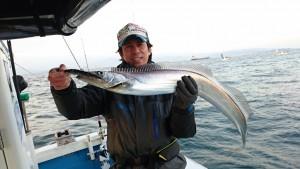 寒ブリ&太刀魚! - [1/2]