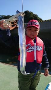 太刀魚!!